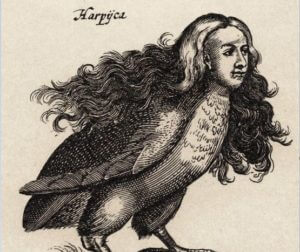 Harpyien, Mythologie